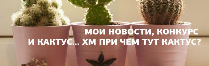 new-licnaja-gizn-kaktus