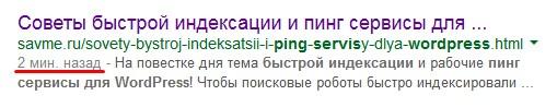 ping-servisi-dlja-wordpress-004